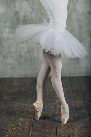 Ballet in beautiful style. Modern ballet. Ballet dancer.