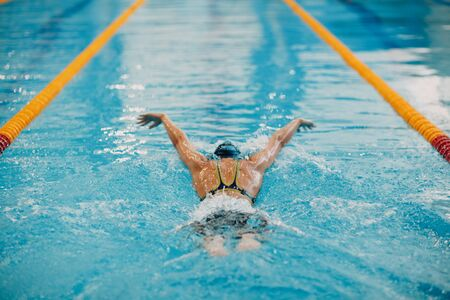 Young woman swimmer swims in swimming pool. Back view.