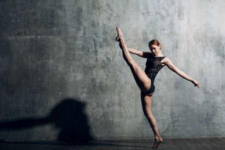 Ballet in beautiful style. Modern ballet. Ballet dancer.