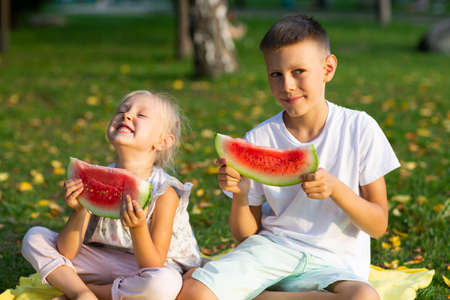 To cute kids lttle boy and girl eating juicy watermelon in the autumn park meadow Stok Fotoğraf - 154845786