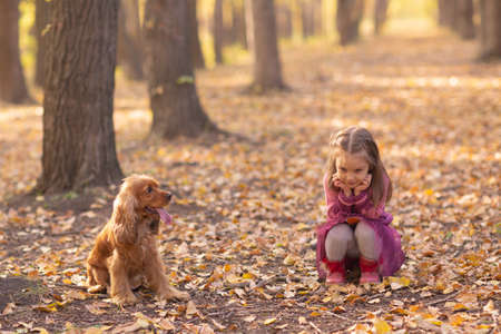 Cute little girl with dog in autumn park with orange and yellow color leaves