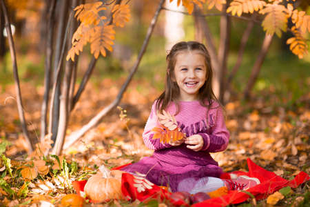 Cute little girl in autumn park with orange color leaves and yellow pumpkin. Stok Fotoğraf