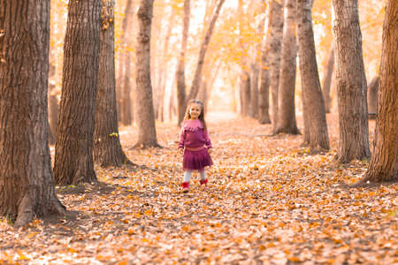 Cute little girl walking in autumn park with orange and yellow color leaves