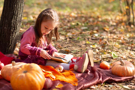 Cute little girl in autumn park with books and orange color leaves and yellow pumpkin.