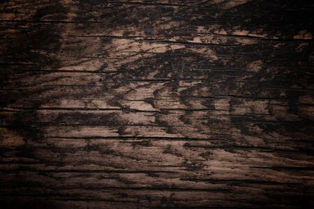 Dark Wood Texture Background photo