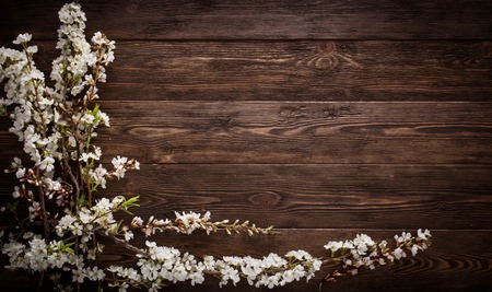 floorboards: Flowers on wood texture background with copyspace