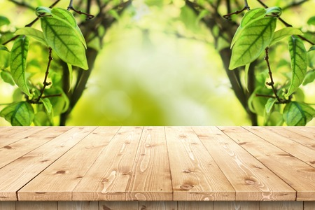 Empty wooden table in a sun drenched summer garden for product placement or montage with focus to the table top in the foreground, with summer bokeh background.