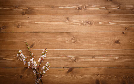 knotty: Flowers on wood texture background with copyspace