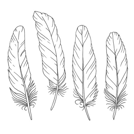 Hand drawn feathers set on white background. Vector illustration