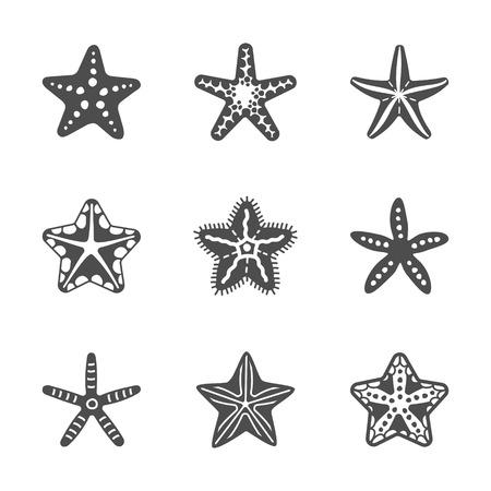 stella marina: Figura insieme di vari stelle marine del mare. Illustrazione vettoriale Vettoriali