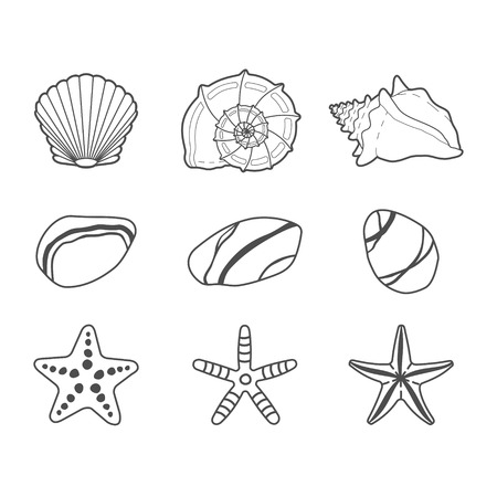 shell: Sea shells, stars and stones vector icon set isolated on a white background