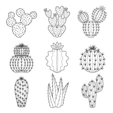 輪郭のサボテンと多肉植物のベクトルを設定します。装飾的な分離アイコン イラスト。漫画スタイルのいたずら書き。