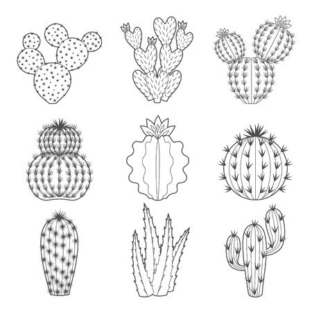 Vector set of contour cactus et plantes succulentes. icônes isolées décoratif illustration. griffonnages de style de bande dessinée.