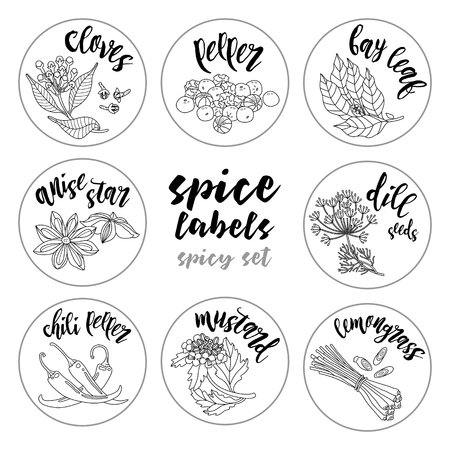 aromatic: Spices and herbs jar labels and stickers. Contour vector condiment spicy set with cloves, pepper, bay leaf, dill seed, anise star, mustard, lemongrass, chili pepper. Botanical illustrations