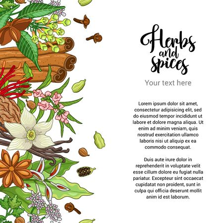 Vector bakery card design with spices and herbs. Decorative colorful background with type design. Seamless border with text template Ilustração