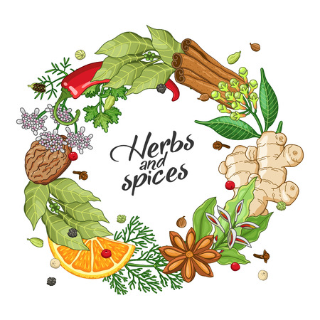 Vector winter circle wreath template with spices and herbs. Decorative colorful composition with type design Illustration