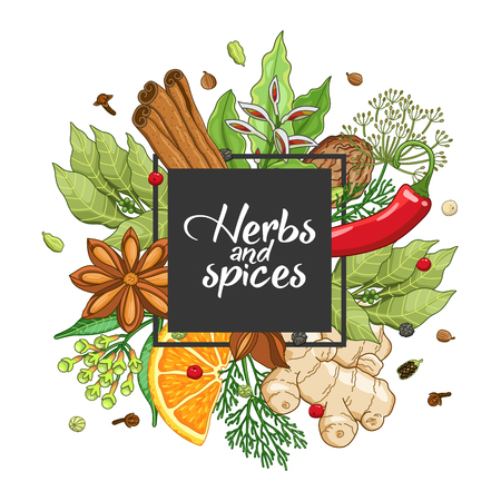 Vector winter square design with spices and herbs. Decorative colorful composition with type design