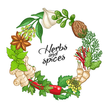 Vector hot circle wreath template with spices and herbs. Decorative colorful composition with type design Vetores