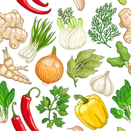 herbs: Vector vegetable seamless pattern with spices and herbs. Decorative colorful composition on white background Illustration