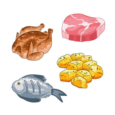 Food and meal vector set in cartoon style. Meat steak, chicken fish and potatoes illustration. Single objects Isolated on white. Zdjęcie Seryjne - 74633223