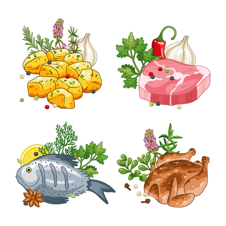 Food and meal vector set in cartoon style. Meat steak, chicken, fish and potatoes illustration with herbs and spices. Isolated on white. Illustration