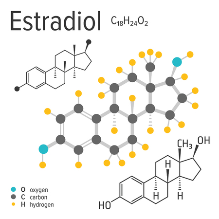 Chemical formula, structure and model of the estradiol molecule, vector illustration