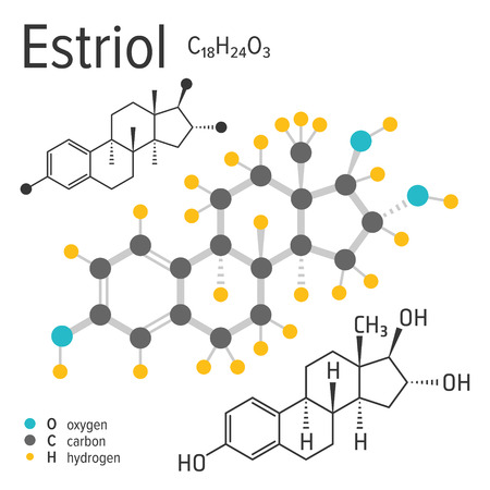Chemical formula, structure and model of the estriol molecule, vector illustration Çizim
