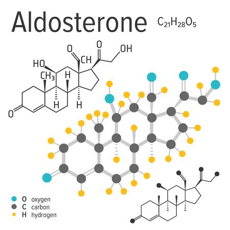 Chemische Formel, Struktur und Modell des Aldosteronmoleküls, Vektorabbildung Vektorgrafik