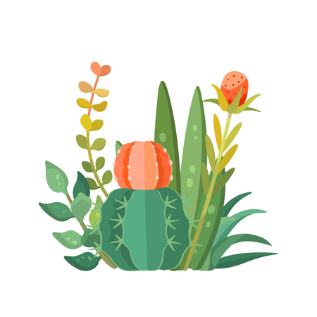 Tropical house plants and cactus composition. Decorative vector isolated succulents bouquet
