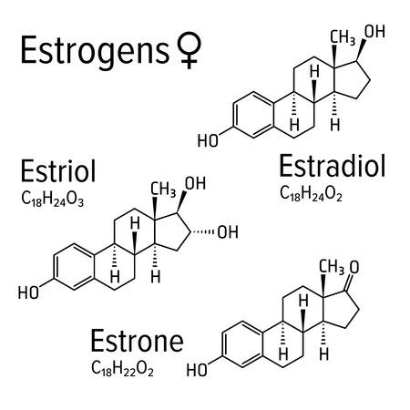 Estrogens vector chemical formulas. Estradiol, estriol and estrone female steroid harmones. Chemical molecular model. Standard-Bild - 121653866
