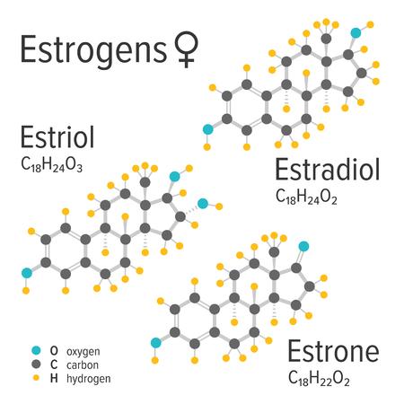 Estrogens vector chemical formulas. Estradiol, estriol and estrone female steroid harmones. Chemical molecular model. Illustration