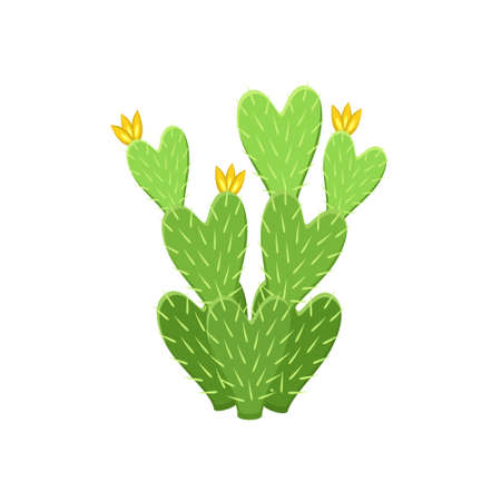 Colorful cactus and succulent plant vector illustration. Decorative isolated icon. Cartoon style doodle. Ilustrace