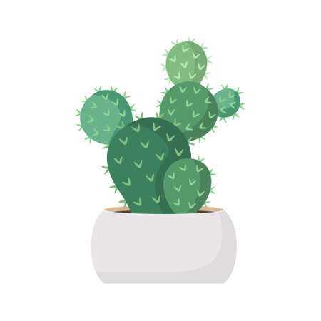 Cactus and succulent in pot domestic colorful cartoon vector illustration. Decorative flower plant. Isolated icon cacti