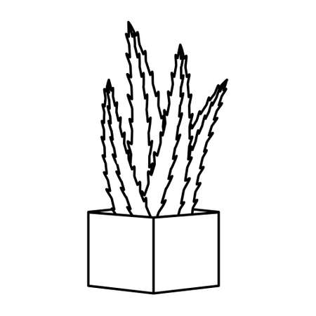 Cactus and succulent line style cartoon vector illustration. Decorative flower plant in pot. Isolated icon cacti 矢量图像