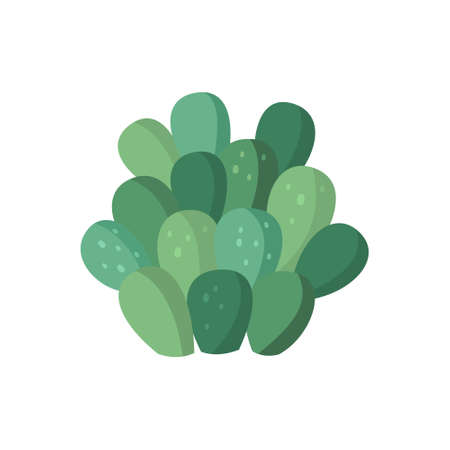 Cactus and succulent colorful cartoon vector illustration. Decorative flower plant. Isolated icon cacti 矢量图像