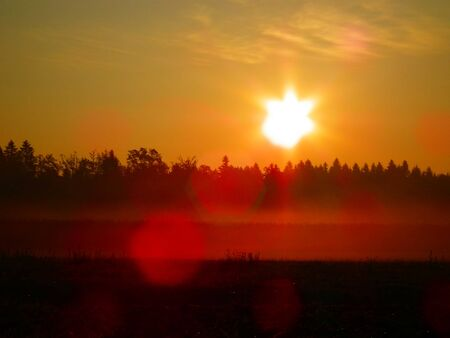 Beautiful eraly morning sunrise with mist over meadow