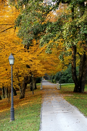 Walking road and a street lamp in an autumn park