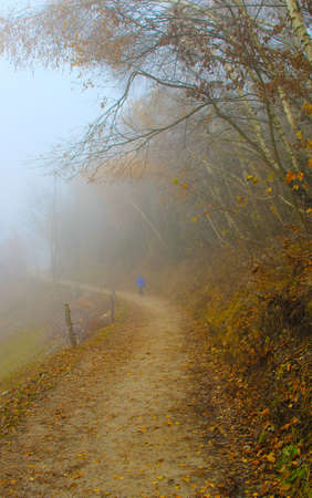Misty raod and woman walking into the fog.