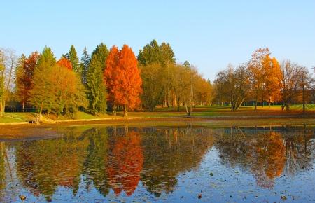 Beautiful reflections on the lake. photo