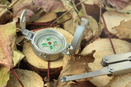 Showing direction with compass and using knife in wild nature. photo