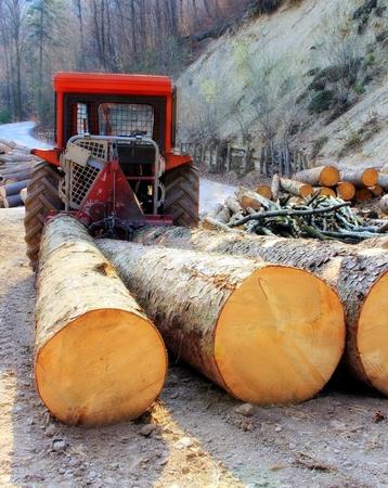 Ein Traktor und Holz in den Wäldern