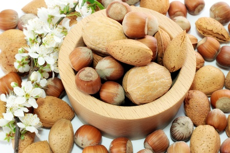 Mandle a lískové ořechy v dřevěné šálek s pobočkou třešňové květy