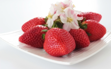 Red strawberries with apple blossom  photo