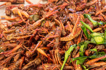 fried grasshopper is one of  food street in Thailand Stock fotó