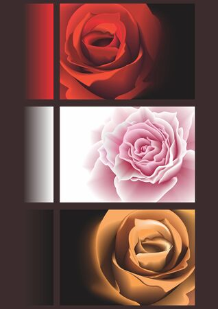 banners with roses  photo