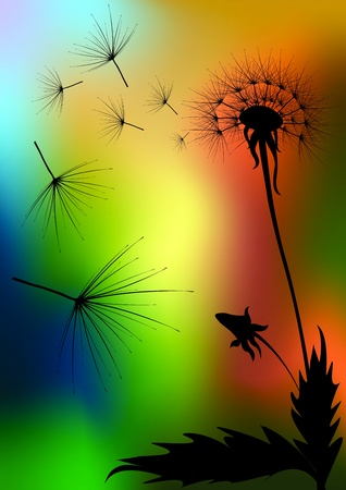 Dandelions illustration Vector