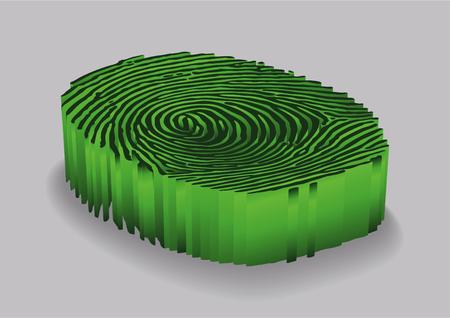 Green Fingerprint. Design background. Vector illustration. Illustration