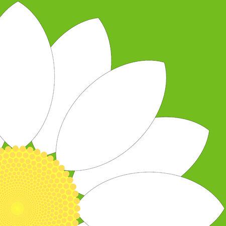 Simple white flower design