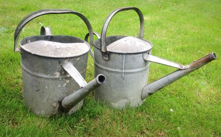 A Pair of Metal Watering Cans