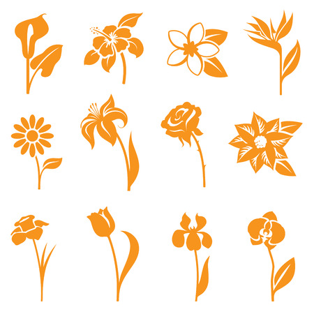 daisy flower: Flower icons - gradient free and easy to change colour.